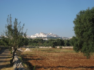 "View of Ostuni, ""La Citta' Bianca"" from the masseria"